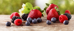 1.0_OurBerries_header_01.jpg
